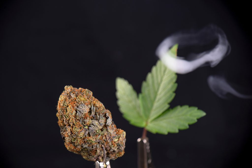 Cannabis nug and leaf with smoke ring isolated over black